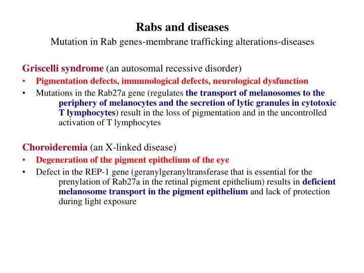 Rabs and diseases