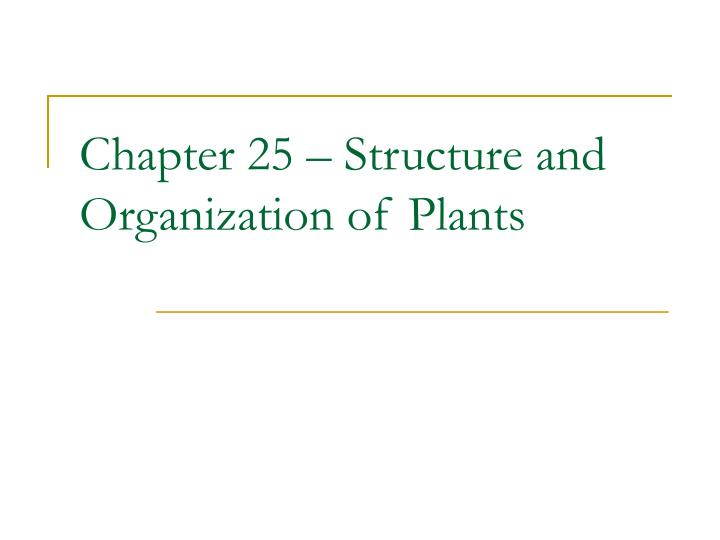 chapter 25 structure and organization of plants n.