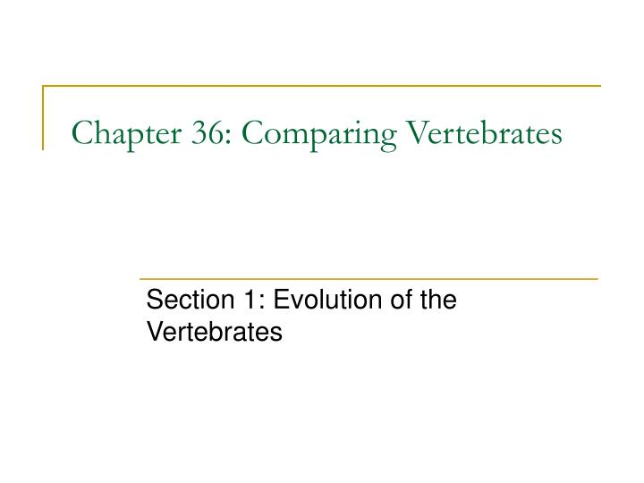Chapter 36 comparing vertebrates