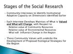 stages of the social research