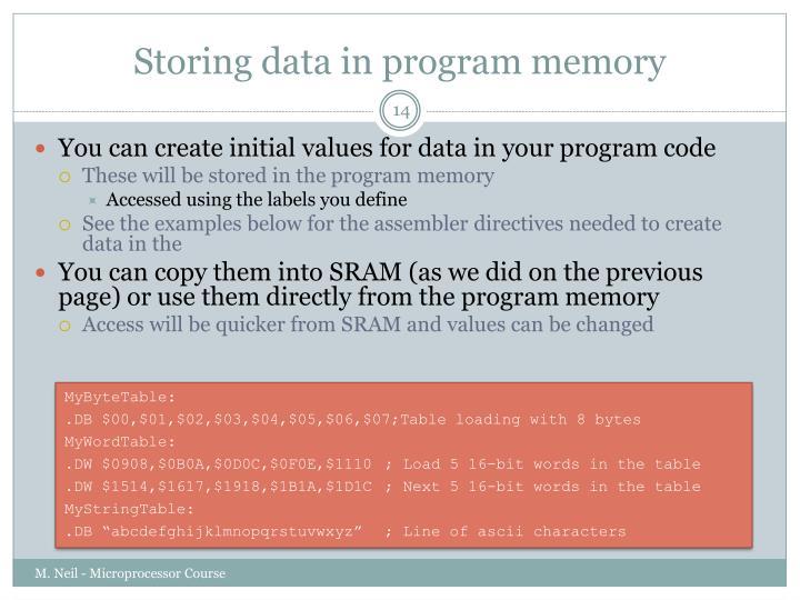 Storing data in program memory