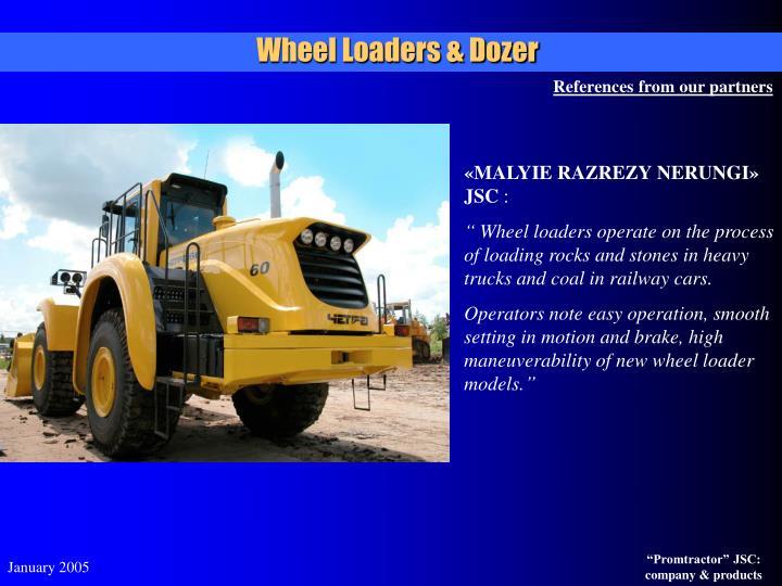 Wheel Loaders & Dozer