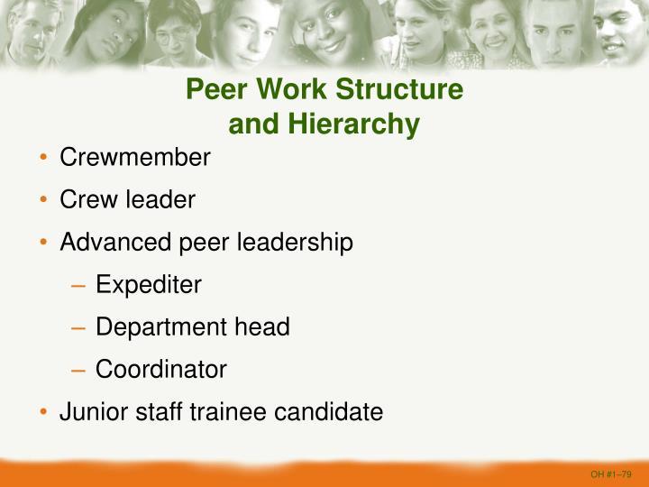 Peer Work Structure