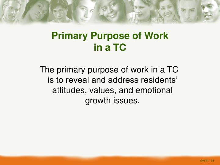 Primary Purpose of Work