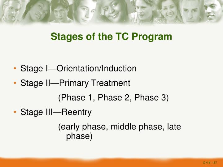 Stages of the TC Program