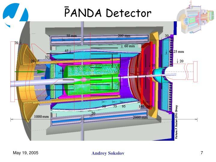 PANDA Detector