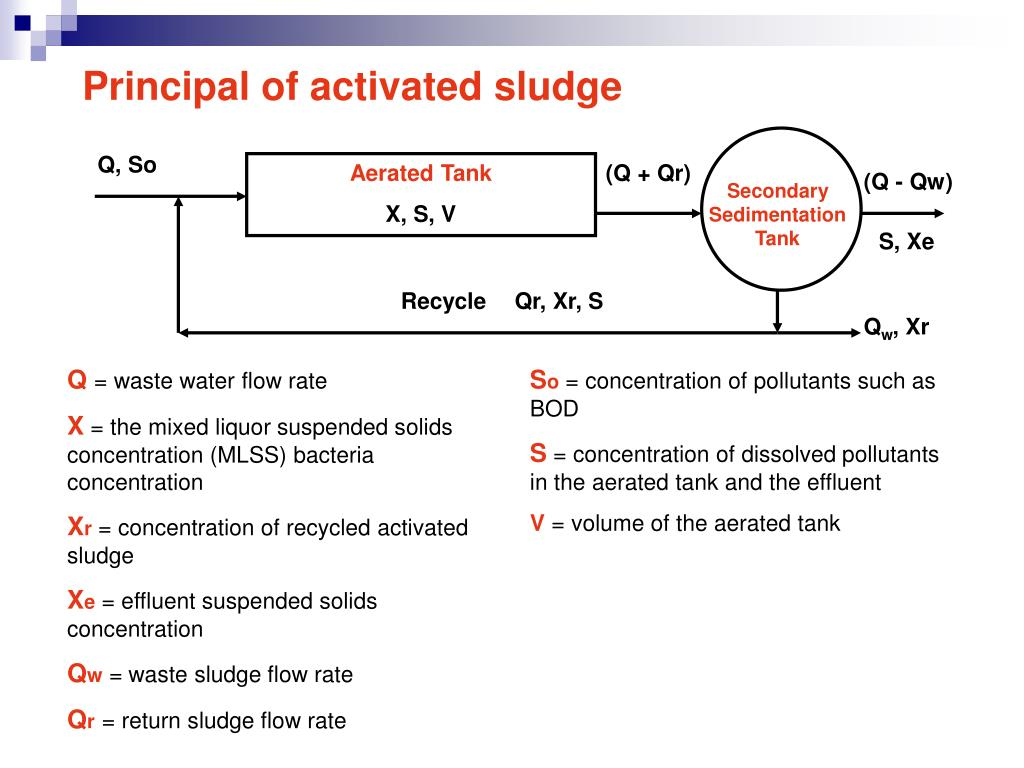 PPT - Wastewater Treatment Processes Lecture 9 PowerPoint