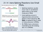21 14 trans splicing reactions use small rnas