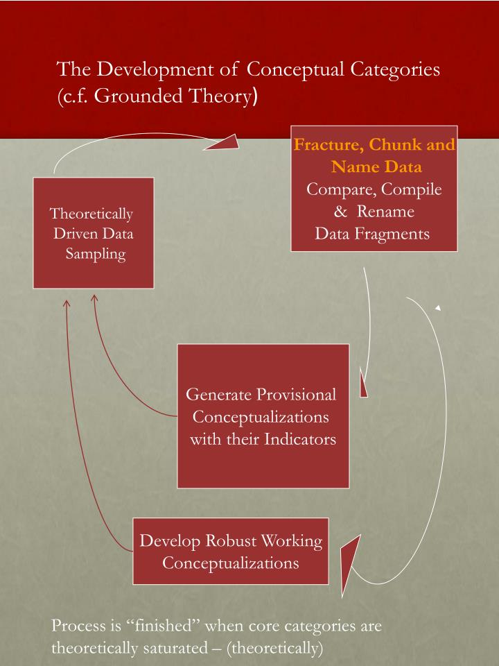 The Development of Conceptual Categories  (c.f. Grounded Theory