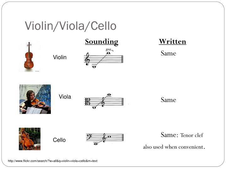 Violin/Viola/Cello