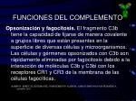 funciones del complemento2