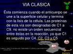 via clasica