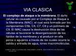 via clasica3