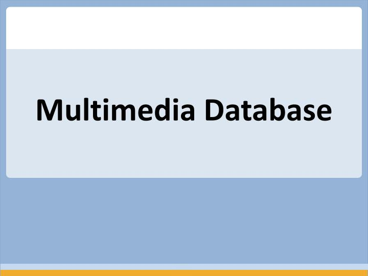 Multimedia Database