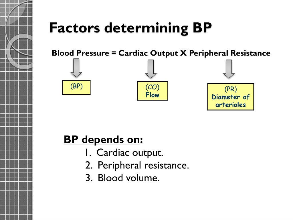 Ppt Blood Pressure Powerpoint Presentation Free Download Id