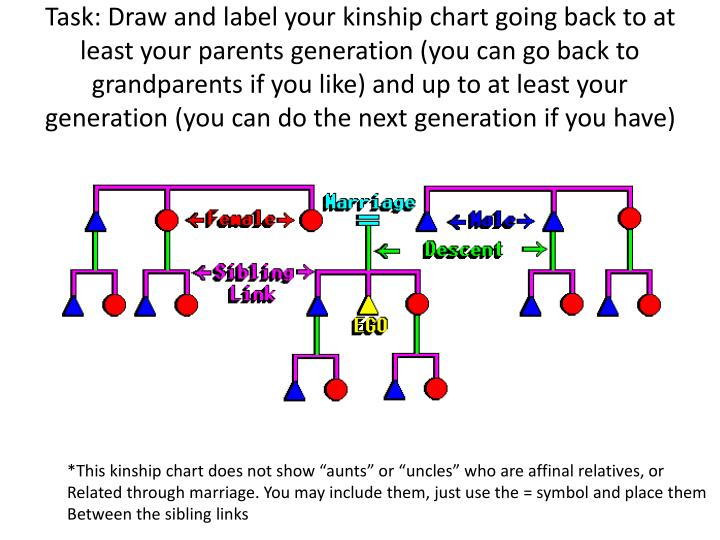 Ppt Hw Copy The Kinship Symbols And Kin Type Association For Your