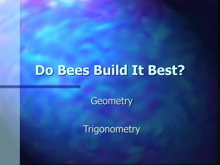 do bees build it best n.
