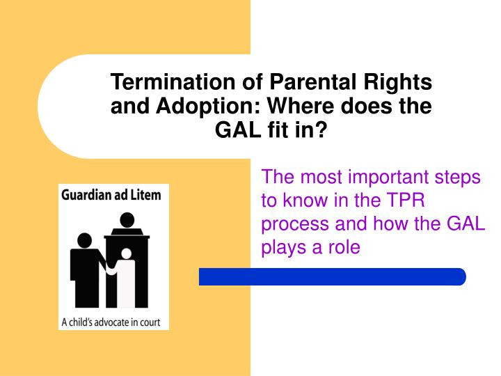 termination of parental rights and adoption where does the gal fit in
