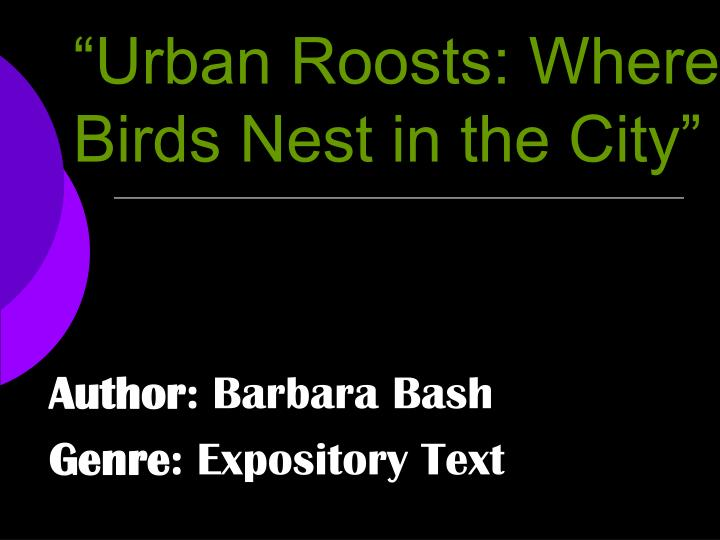 urban roosts where birds nest in the city n.