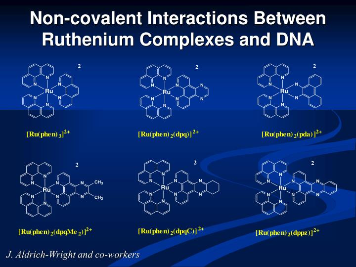 Non-covalent Interactions Between Ruthenium Complexes and DNA