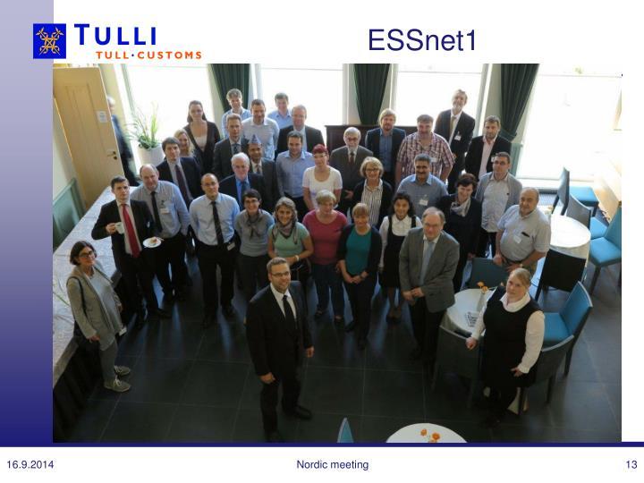 ESSnet1