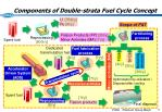 components of double strata fuel cycle concept