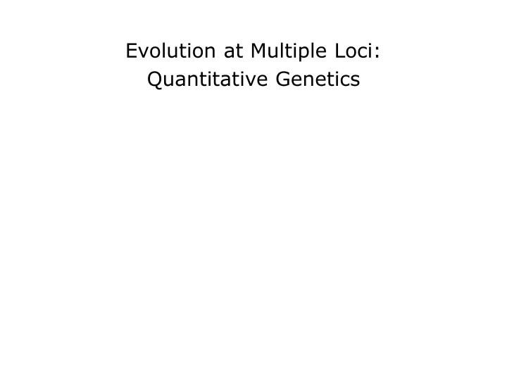 evolutionary quantitative genetics essay To create paragraphs in your essay according to most evolutionary candace galen used the tools of quantitative genetics to determine whether or not.