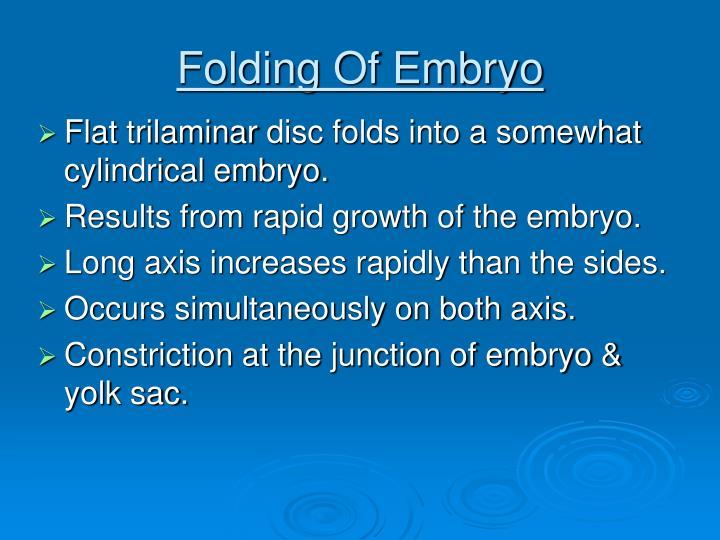 Folding Of Embryo