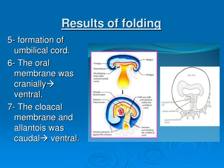 Results of folding