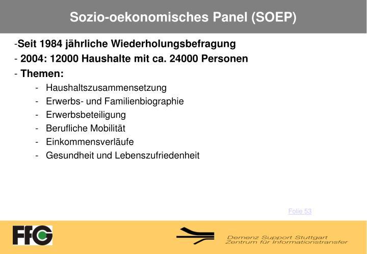 Sozio-oekonomisches Panel (SOEP)
