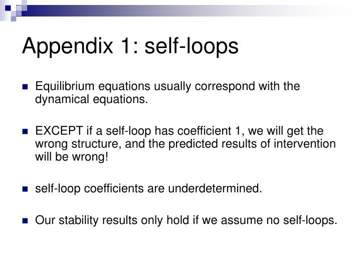 Appendix 1: self-loops