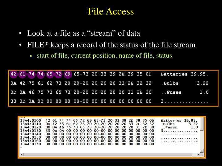 File Access