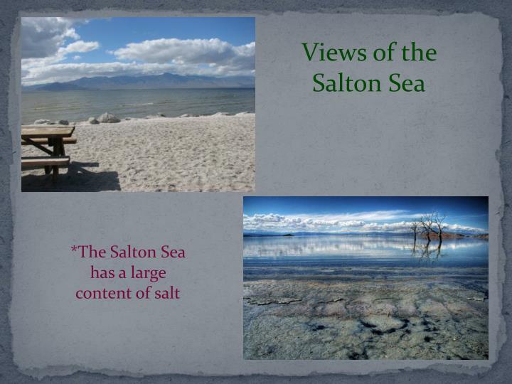 Views of the Salton Sea