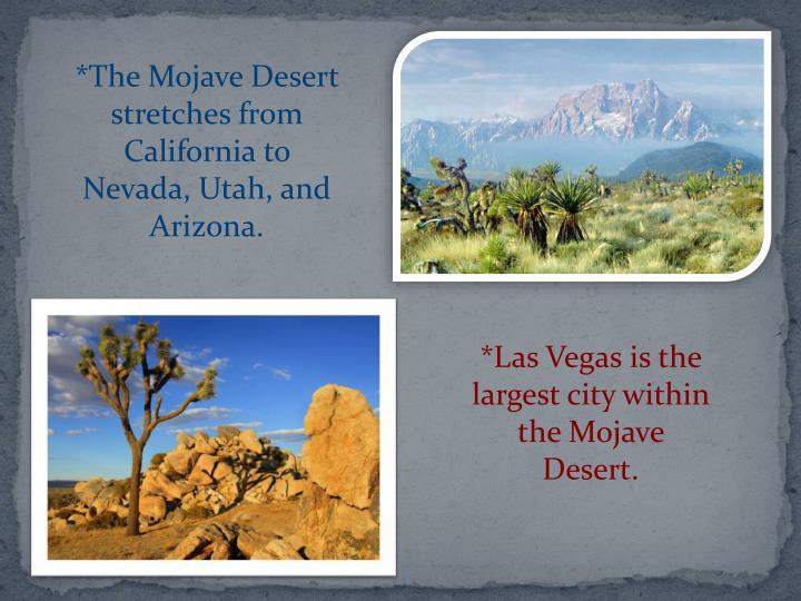 *The Mojave Desert stretches from California to Nevada, Utah, and Arizona.