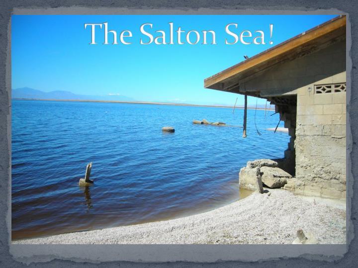 The Salton Sea!