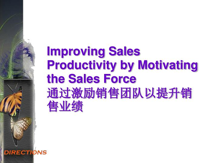 improving sales productivity by motivating the sales force n.