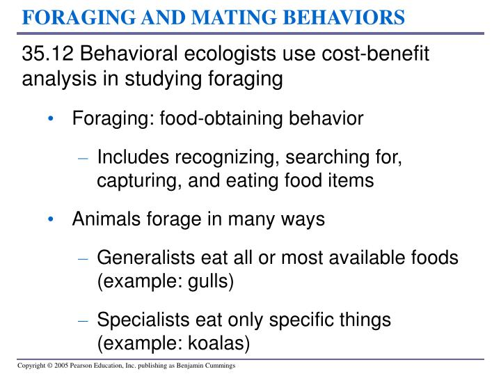 FORAGING AND MATING BEHAVIORS