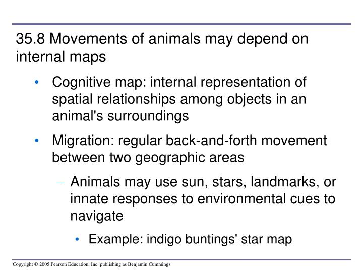 35.8 Movements of animals may depend on internal maps