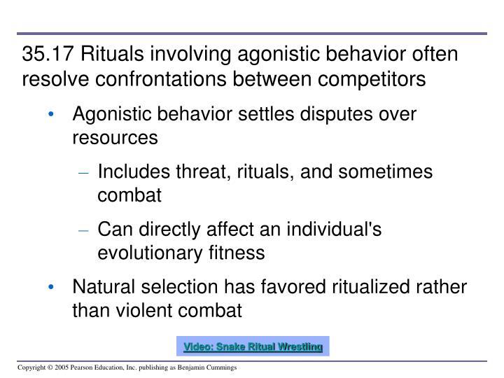 35.17 Rituals involving agonistic behavior often resolve confrontations between competitors