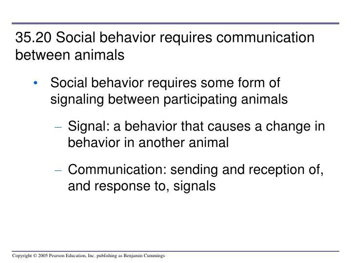 35.20 Social behavior requires communication between animals