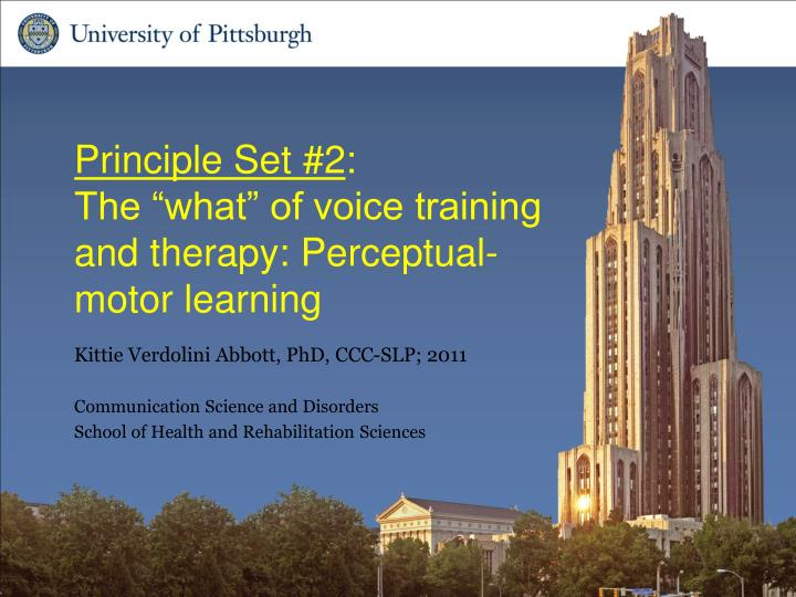 principle set 2 the what of voice training and therapy perceptual motor learning n.
