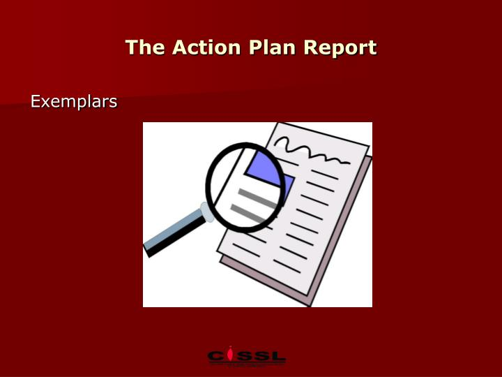 The Action Plan Report