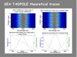 sea tadpole theoretical traces
