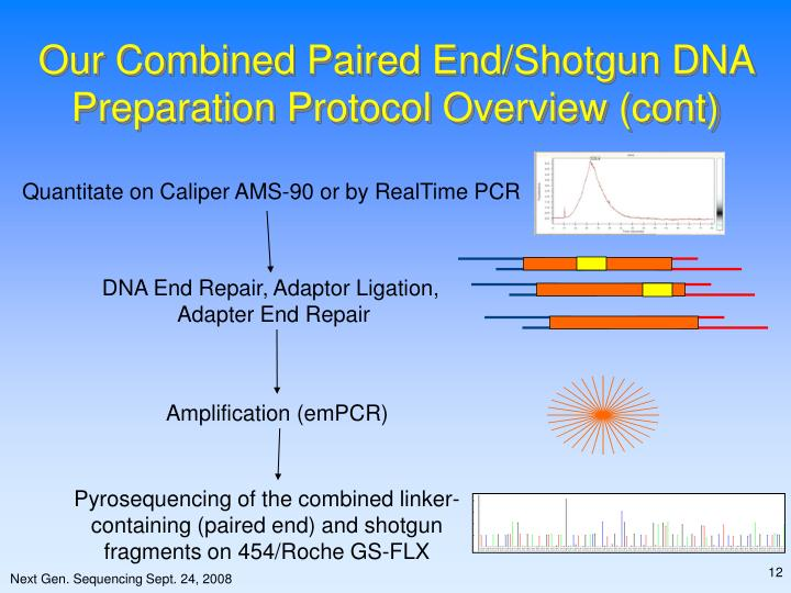 Quantitate on Caliper AMS-90 or by RealTime PCR