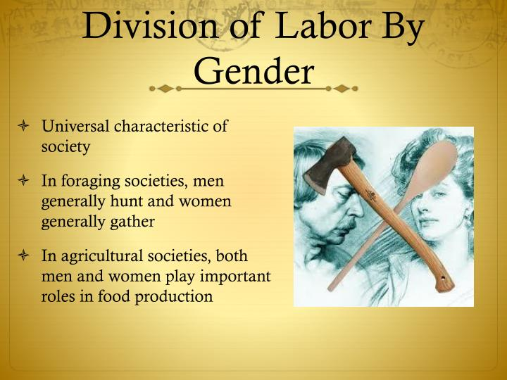 Division of Labor By Gender