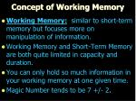 concept of working memory