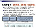 example dumb blind fuzzing