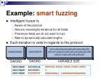 example smart fuzzing