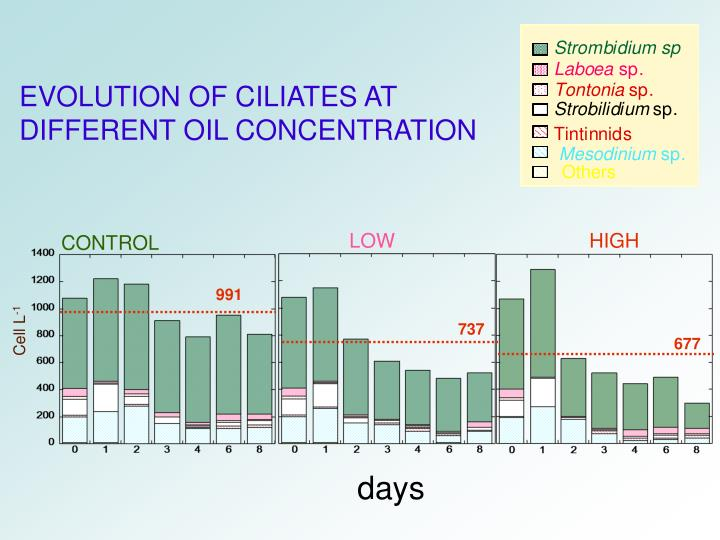 EVOLUTION OF CILIATES AT