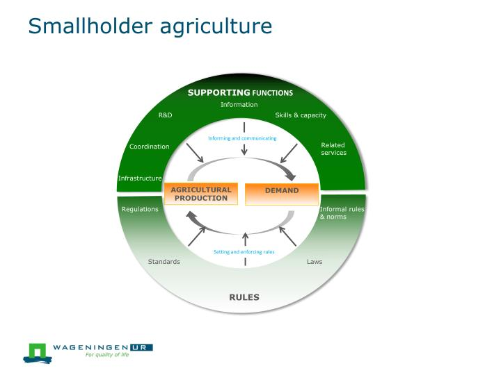 Smallholder agriculture